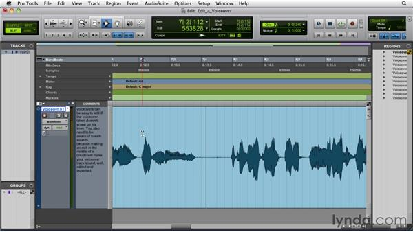 Editing a voiceover: Pro Tools 9 Essential Training