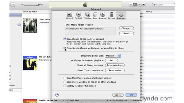 Extending your library: iTunes 10 Essential Training