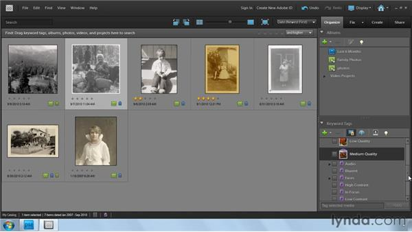 Adding keyword and smart tags: Photoshop Elements 9: Scanning and Restoring Photos
