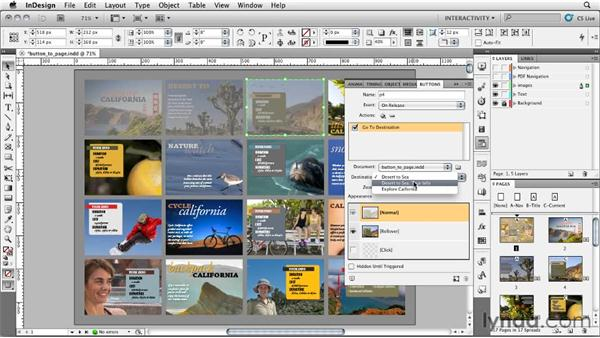 Using a button to go to a specific page in a PDF: InDesign CS5: Interactive Documents and Presentations