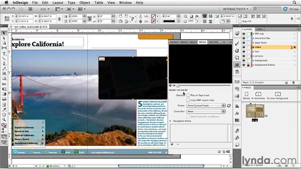 Placing a video from a URL: InDesign CS5: Interactive Documents and Presentations
