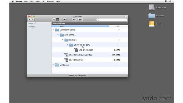 Performing a better catalog backup: Lightroom 3 Advanced Techniques