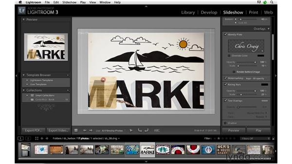 Implementing a custom watermark: Lightroom 3 Advanced Techniques