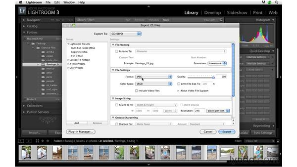 Exporting to burn on DVD or Blu-ray: Lightroom 3 Advanced Techniques