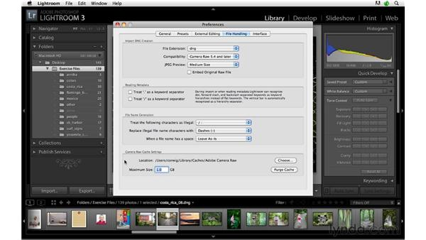 Increasing the cache size for greater speed: Lightroom 3 Advanced Techniques
