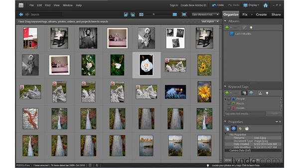 Viewing thumbnails: Photoshop Elements 9 Essential Training