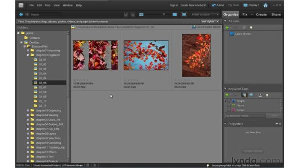 : Photoshop Elements 9 Essential Training