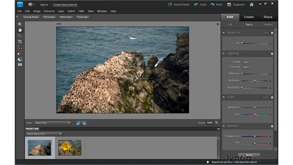 The Quick Fix controls: Photoshop Elements 9 Essential Training