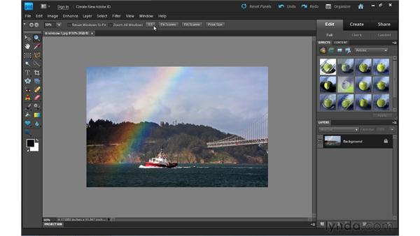 Zooming and navigating: Photoshop Elements 9 Essential Training