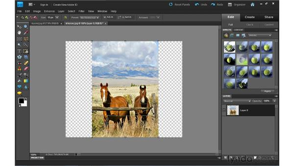 Recomposing photos: Photoshop Elements 9 Essential Training