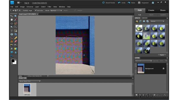 Manual selection tools: Photoshop Elements 9 Essential Training