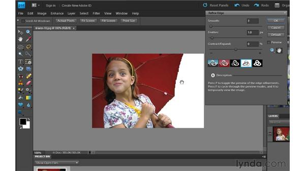 Refining selection edges: Photoshop Elements 9 Essential Training