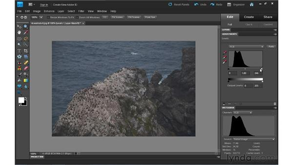 Adding a Levels adjustment layer: Photoshop Elements 9 Essential Training