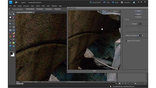 Reducing digital noise: Photoshop Elements 9 Essential Training