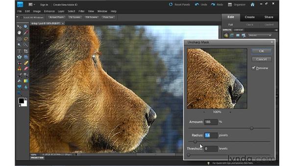 Sharpening photos: Photoshop Elements 9 Essential Training