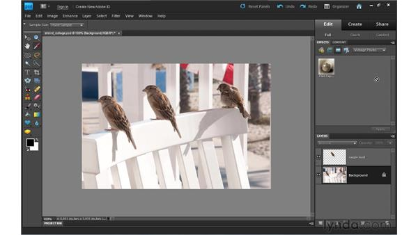 Adding effects: Photoshop Elements 9 Essential Training