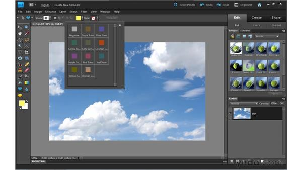 Using shapes: Photoshop Elements 9 Essential Training