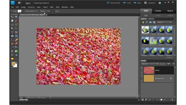 Using the Cookie Cutter tool: Photoshop Elements 9 Essential Training