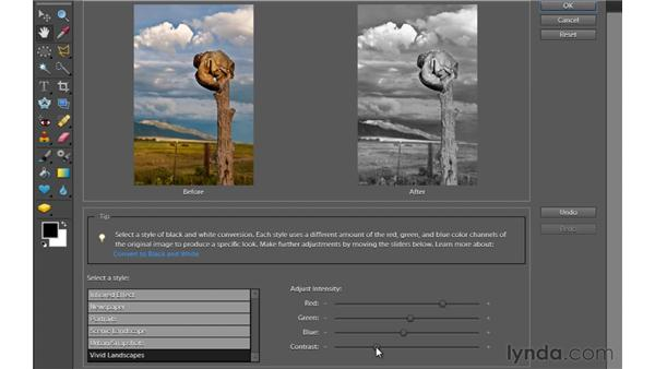 Converting color to black and white: Photoshop Elements 9 Essential Training