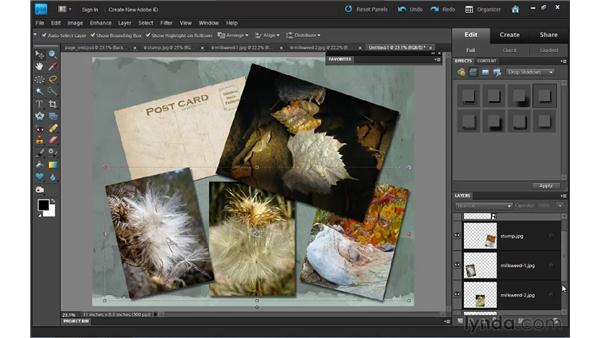 End to end: Completing a scrapbook page: Photoshop Elements 9 Essential Training