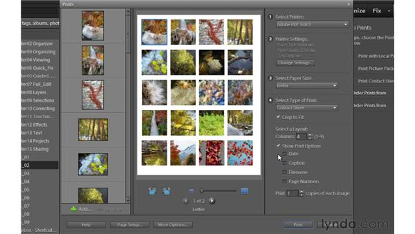 Contact sheets and picture packages (Windows only): Photoshop Elements 9 Essential Training