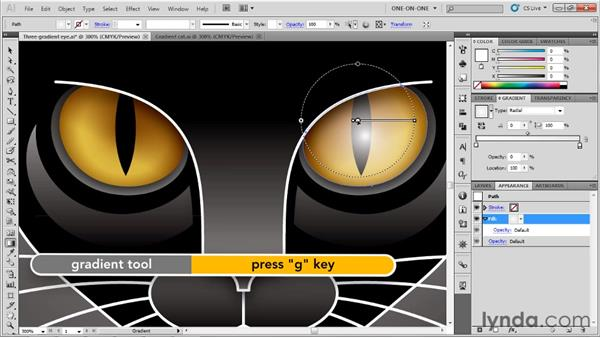 : Illustrator CS5 One-on-One: Advanced