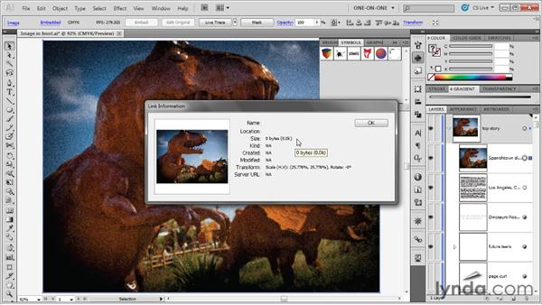 : Illustrator CS5 One-on-One: Advanced
