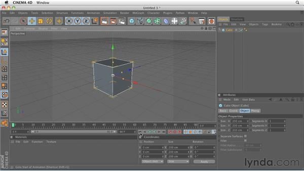 Understanding object categories: Comparing active and passive objects: CINEMA 4D R12 Essential Training