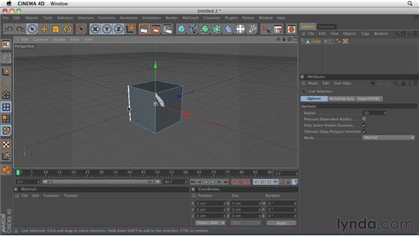 Understanding the basic components of 3D objects: Points, edges, and polygons: CINEMA 4D R12 Essential Training