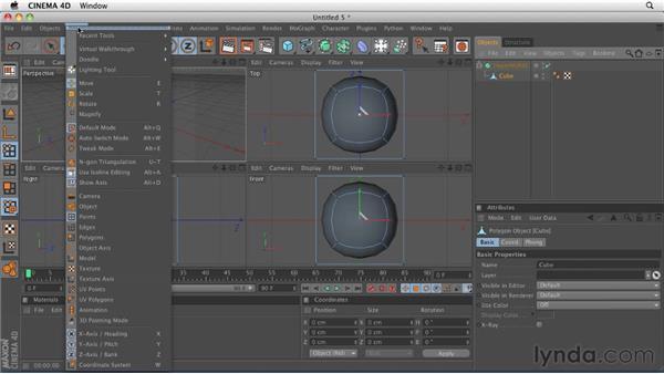 Organic modeling: Creating a HyperNURBS object: CINEMA 4D R12 Essential Training