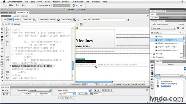 Customizing module tags: Getting Started with Dreamweaver CS5 and Business Catalyst