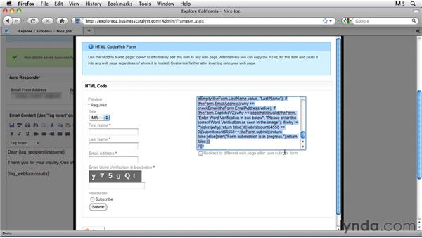 Building a web form: Getting Started with Dreamweaver CS5 and Business Catalyst