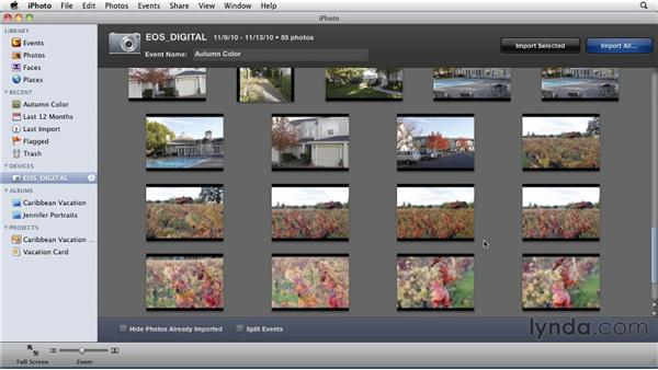 Importing images from your camera: iPhoto '11 Essential Training