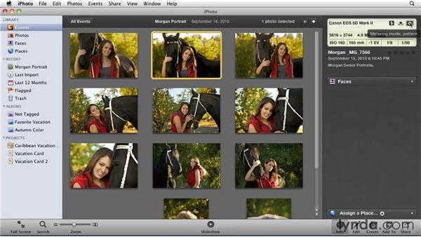 Understanding metadata: iPhoto '11 Essential Training