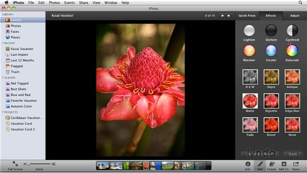 Working in the Adjust tab: iPhoto '11 Essential Training