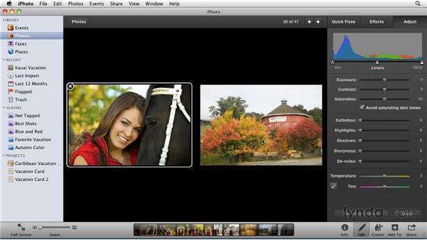Adjusting color saturation: iPhoto '11 Essential Training