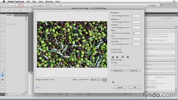 Creating slideshows: Captivate 5 Essential Training