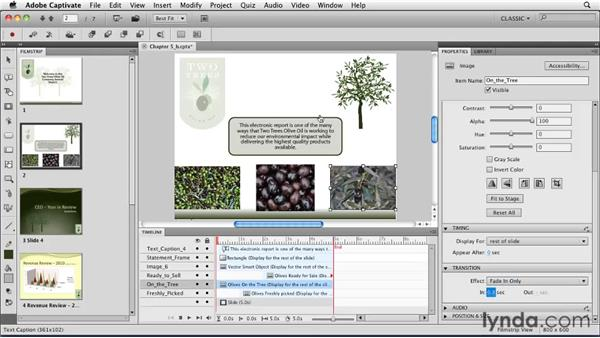 Adding transitions to objects: Captivate 5 Essential Training