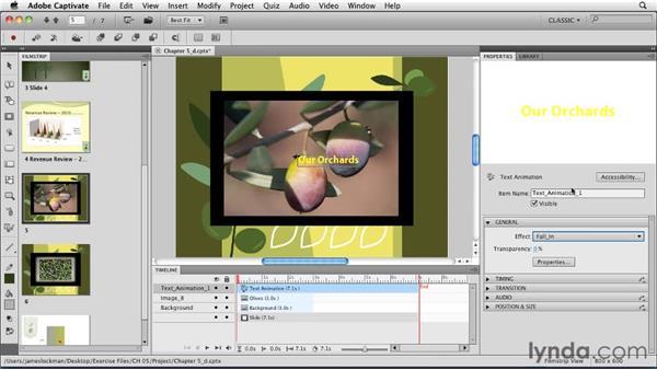 Animating text: Captivate 5 Essential Training