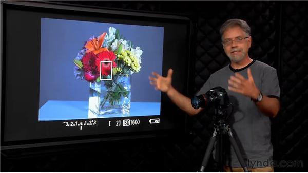 White balance controls: Foundations of Photography: Exposure