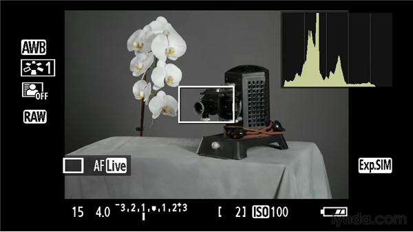 The histogram: Foundations of Photography: Exposure