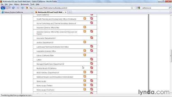 Categorizing RSS feeds: Drupal Gardens Essential Training