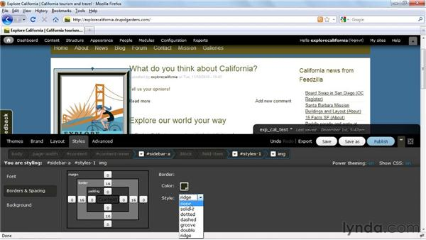 Changing element spacing and borders: Drupal Gardens Essential Training