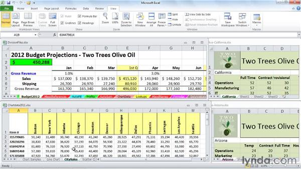 Copying and moving data and entire worksheets across different workbooks: Excel 2010: Managing Multiple Worksheets and Workbooks