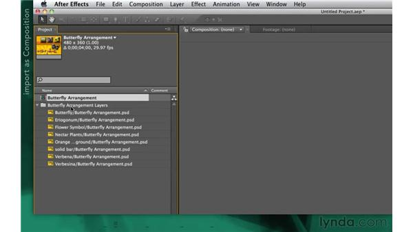 Importing layered Photoshop files: After Effects Apprentice 02: Basic Animation