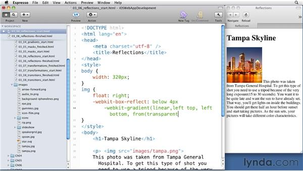 Casting reflections: iOS 4 Web Applications with HTML5 and CSS3
