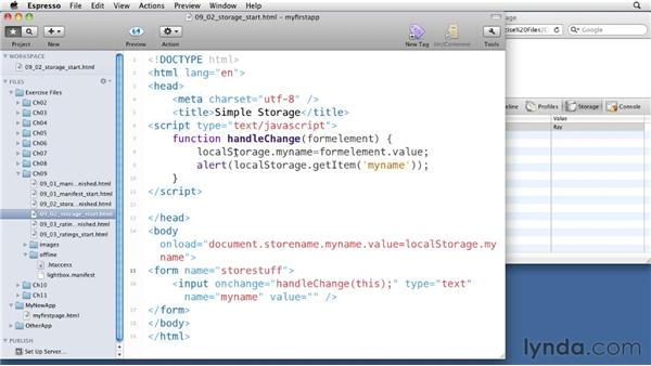 Setting up persistent storage: iOS 4 Web Applications with HTML5 and CSS3