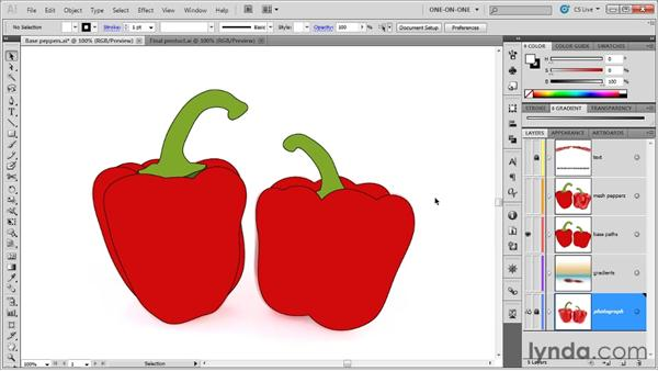 Introducing the gradient mesh: Illustrator CS5 One-on-One: Mastery