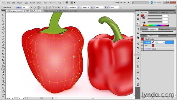 Working with the Mesh tool: Illustrator CS5 One-on-One: Mastery
