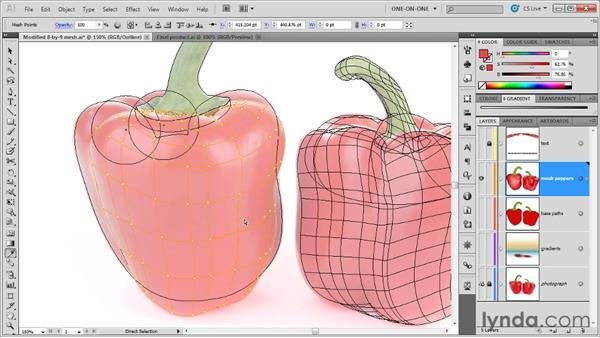 Lifting colors from a tracing template: Illustrator CS5 One-on-One: Mastery
